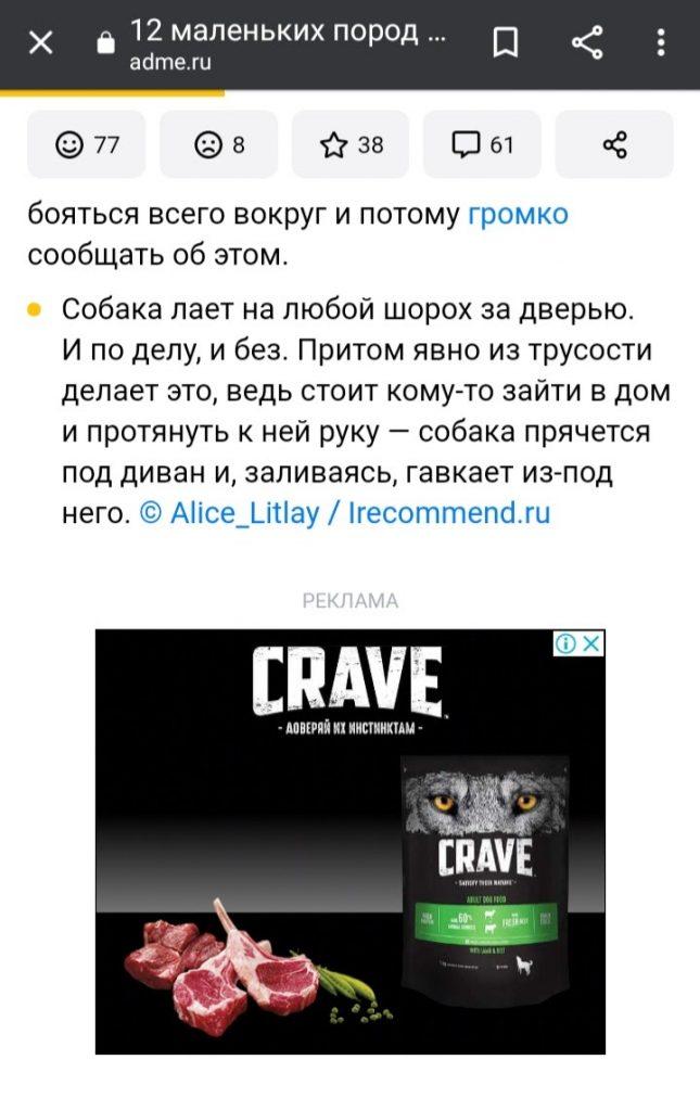 Отчёт по контекстной рекламе: реклама собачьего корма Crave внутри статьи о маленьких породах собак на AdMe.